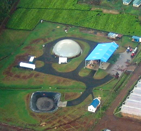 Überblick Biogasanlage in Kericho, Kenia