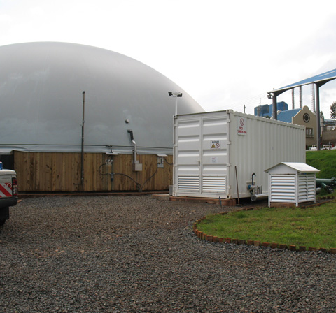Technik-Container Biogasanlage in Kericho, Kenia