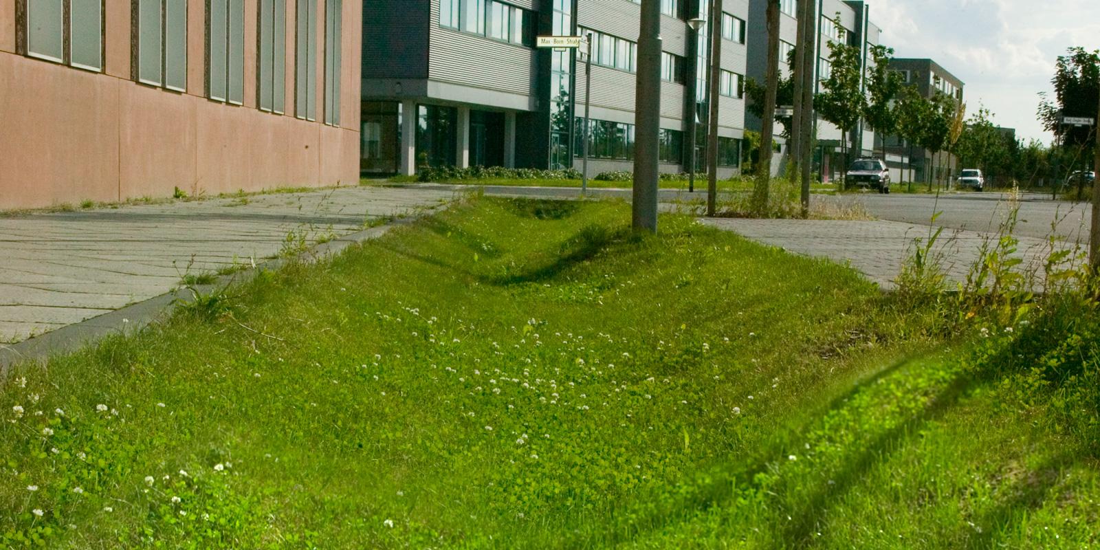 Regenwasserversickerung in Mulden und Rigolen in Berlin Adlershof